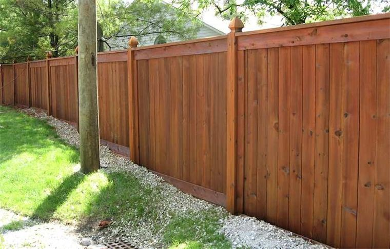 Services The Staining Experts